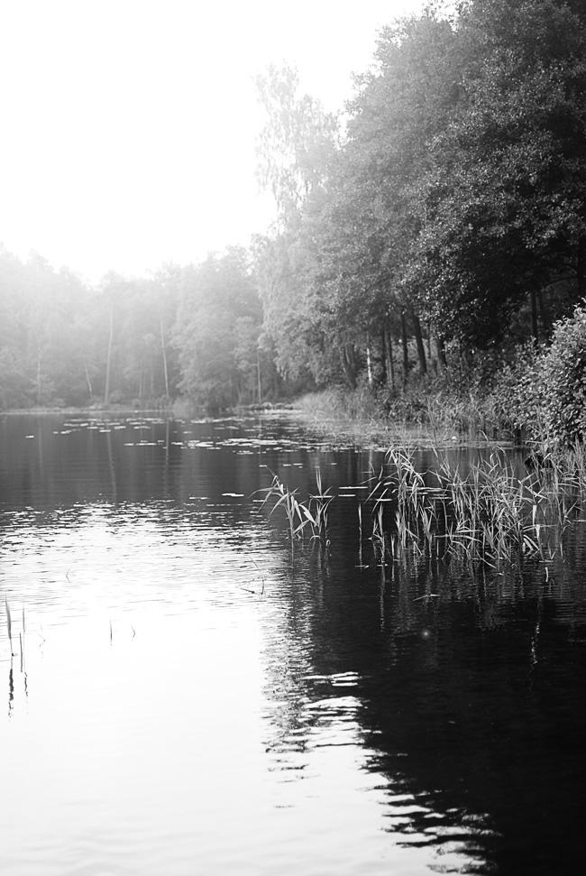 Bjursjön 001